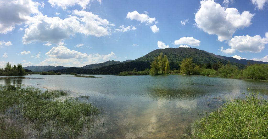 Het meer in het voorjaar